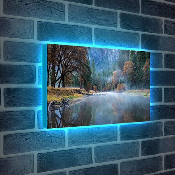 Лайтбокс световая панель - Осень