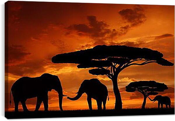 Постер на подрамнике - Африка