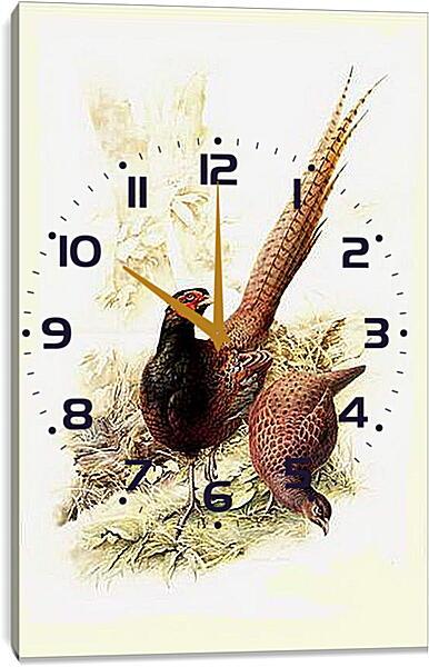 Часы картина - Пара фазанов