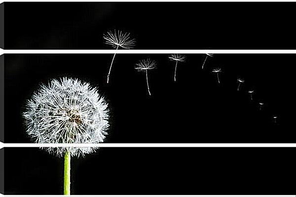 Модульная картина - flowers - одуванчик