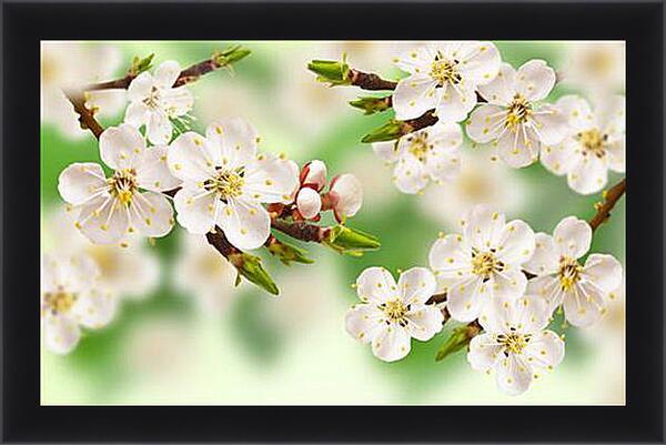 Картина в раме - Весна