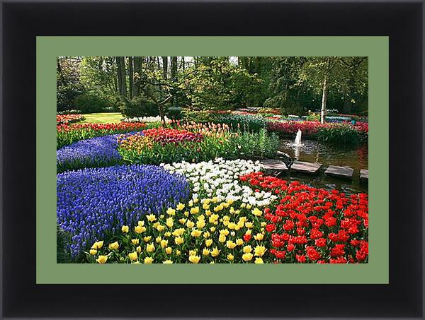 Картина в раме - цветы