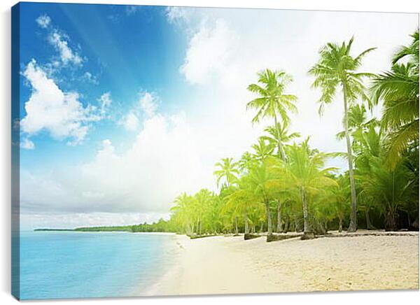 Постер на подрамнике - Пальмы на пляже
