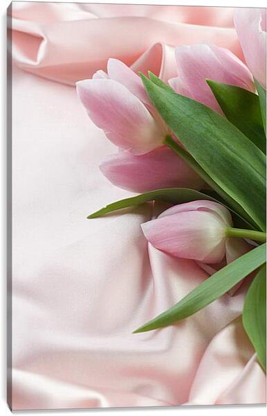 Постер на подрамнике - Розовые тюльпаны