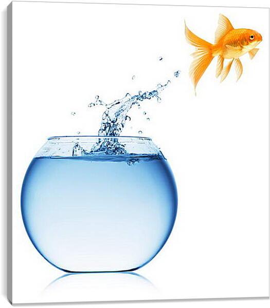 Постер на подрамнике - Рыбка прыгает из аквариума