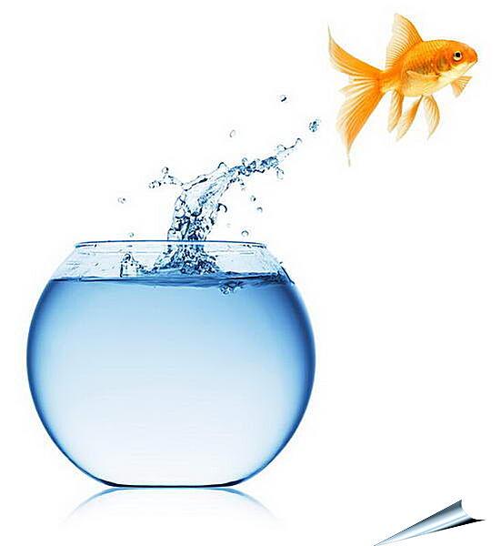 Плакат на стену - Рыбка прыгает из аквариума