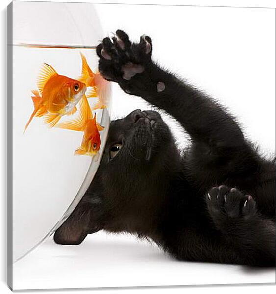 Постер на подрамнике - Котик и рыбка