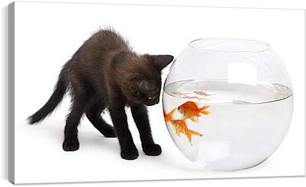 Постер на подрамнике - Черный котик и рыбки