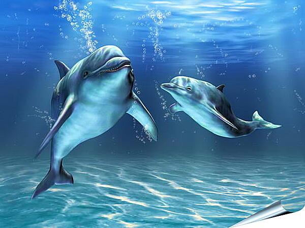 Плакат на стену - Иллюстрация дельфины