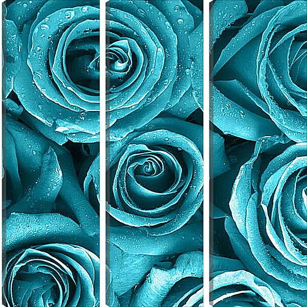 Модульная картина - Голубые розы