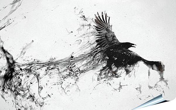 Плакат на стену - Ворон