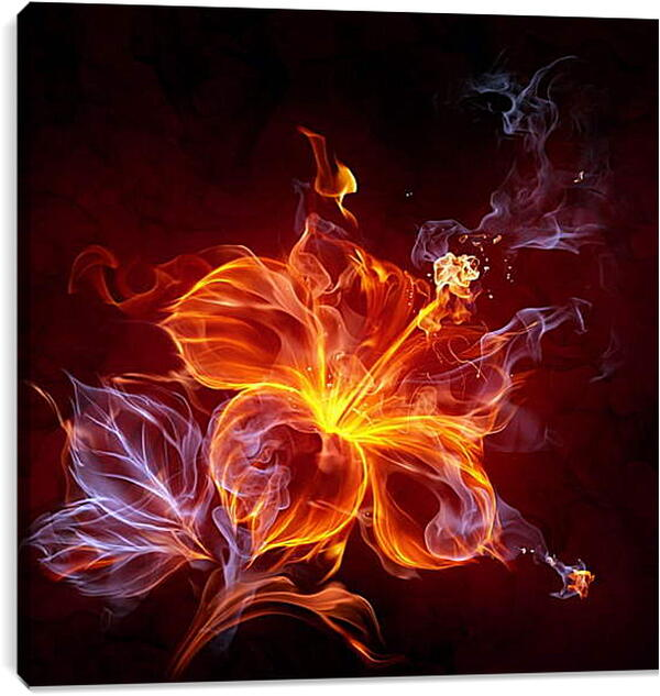 Постер на подрамнике - Огненный цветок