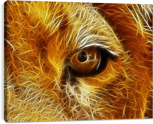 Постер на подрамнике - Взгляд льва