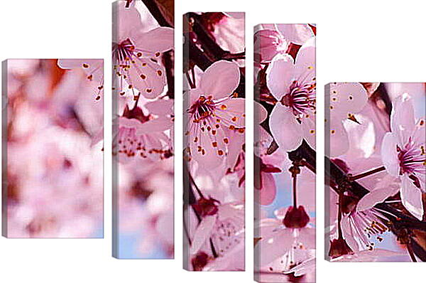 Модульная картина - Вишня весной