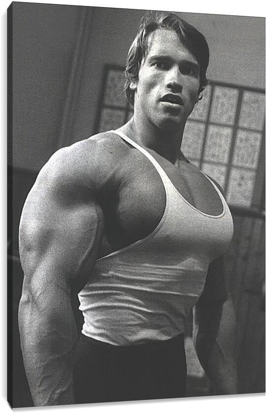 Арнольд Шварценеггер (Arnold Schwarzenegger)Личности<br>Модульная картина из 2 частей . Любые размеры и конфигурации на выбор. Материал печати: натуральный холст.<br>Размер: 63x90 см., 84x120 см., 105x150 см.;