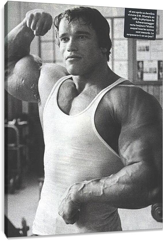 Арнольд Шварценеггер (Arnold Schwarzenegger)Личности<br>Модульная картина из 4 частей . Любые размеры и конфигурации на выбор. Материал печати: натуральный холст.<br>Размер: 66x90 см., 88x120 см., 110x150 см.;