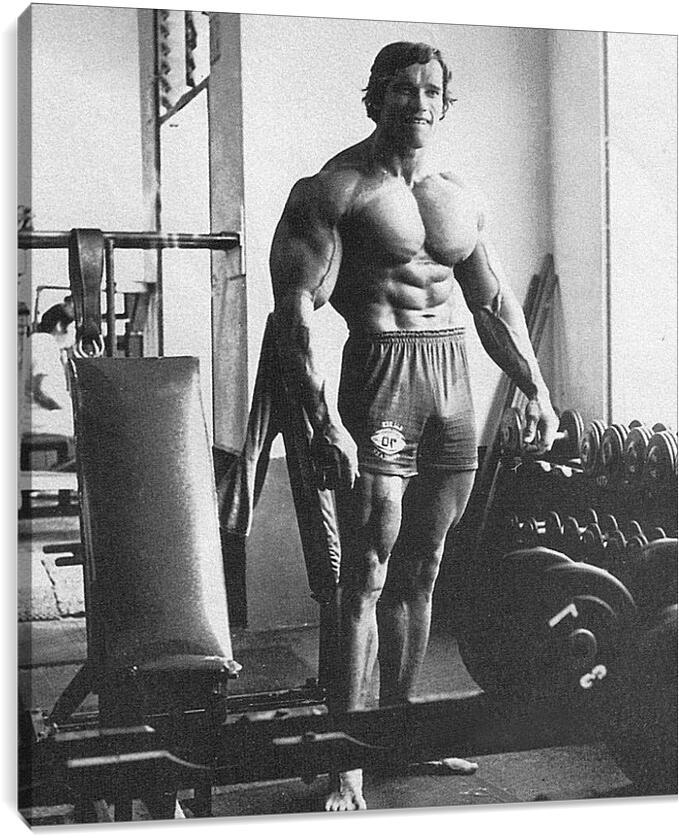 Арнольд Шварценеггер (Arnold Schwarzenegger)Личности<br>Модульная картина из 2 частей . Любые размеры и конфигурации на выбор. Материал печати: натуральный холст.<br>Размер: 79x90 см., 106x120 см., 132x150 см.;