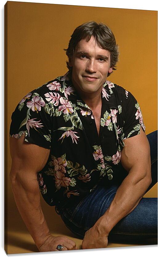 Арнольд Шварценеггер (Arnold Schwarzenegger)Личности<br>Модульная картина из 3 частей . Любые размеры и конфигурации на выбор. Материал печати: натуральный холст.<br>Размер: 60x90 см., 80x120 см., 100x150 см.;