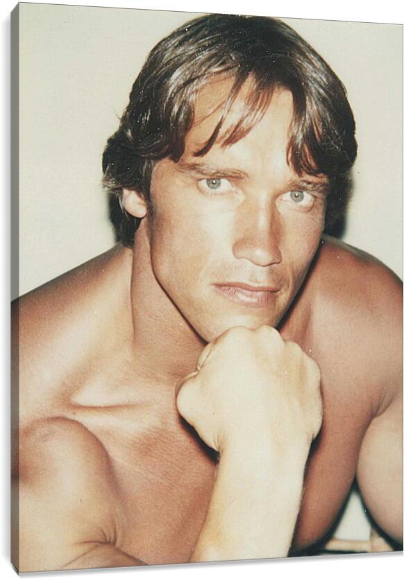 Арнольд Шварценеггер (Arnold Schwarzenegger)Личности<br>Модульная картина из 3 частей . Любые размеры и конфигурации на выбор. Материал печати: натуральный холст.<br>Размер: 68x90 см., 91x120 см., 113x150 см.;