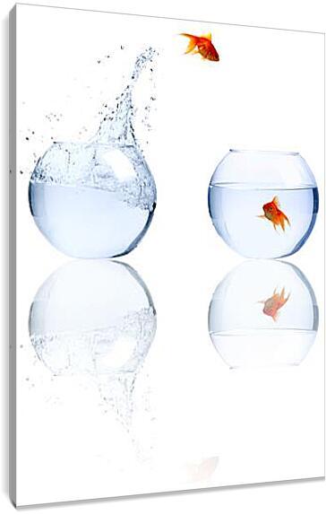 Золотая рыбкаЮмор<br>Модульная картина из 2 частей . Любые размеры и конфигурации на выбор. Материал печати: натуральный холст.<br>Размер: 65x90 см., 87x120 см., 109x150 см.;