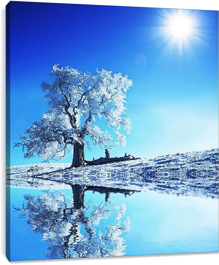 Большое белое деревоПрирода<br>Модульная картина из 5 частей . Любые размеры и конфигурации на выбор. Материал печати: натуральный холст.<br>Размер: 81x90 см., 108x120 см., 135x150 см.;