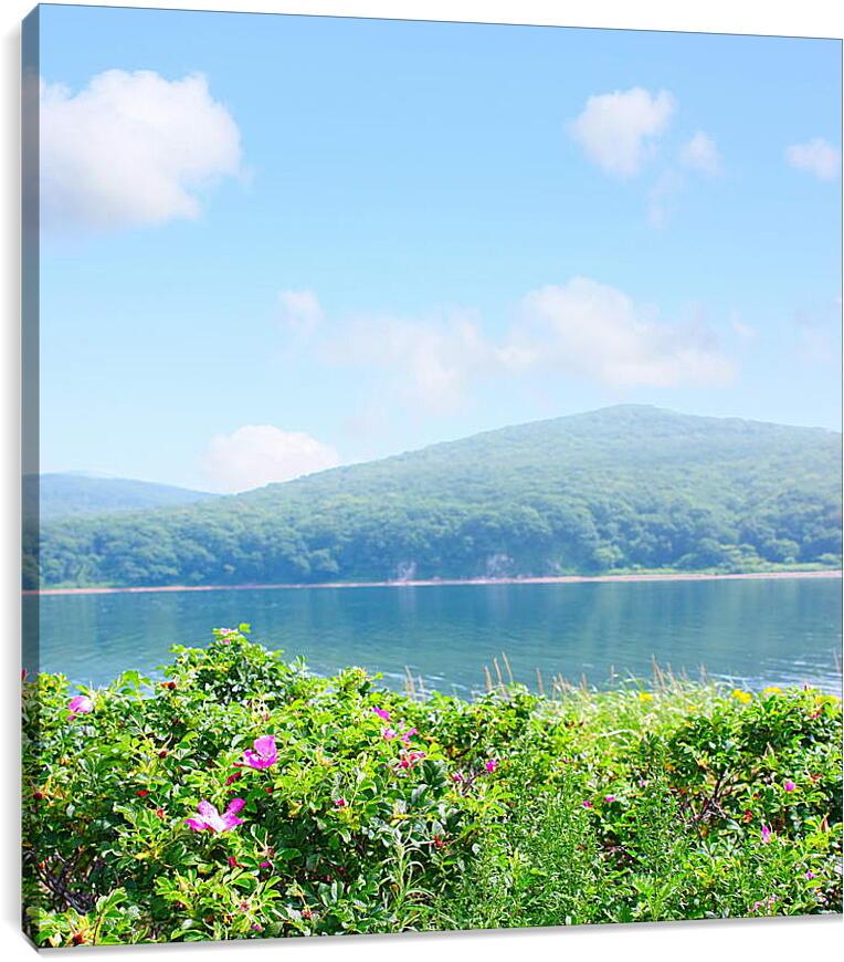 Цветы на побережьеПрирода<br>Модульная картина из 3 частей . Любые размеры и конфигурации на выбор. Материал печати: натуральный холст.<br>Размер: 86x90 см., 114x120 см., 143x150 см.;