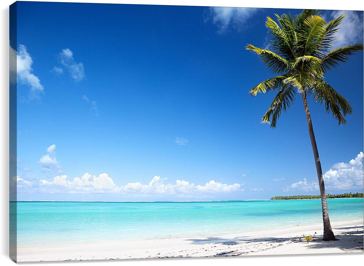Пальма на райском пляжеПрирода<br>Модульная картина из 5 частей . Любые размеры и конфигурации на выбор. Материал печати: натуральный холст.<br>Размер: 90x61 см., 120x81 см., 150x101 см.;