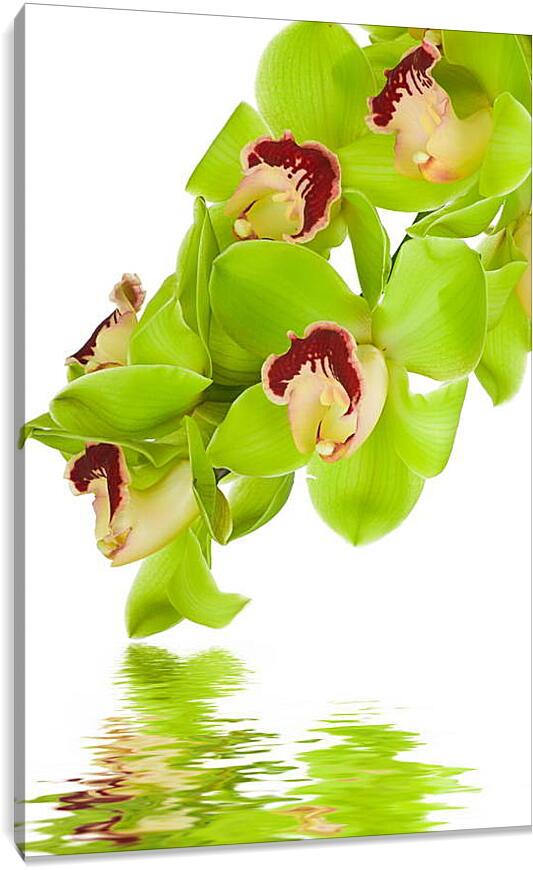 Орхидеи над водойПрирода<br>Модульная картина из 3 частей . Любые размеры и конфигурации на выбор. Материал печати: натуральный холст.<br>Размер: 60x90 см., 80x120 см., 100x150 см.;