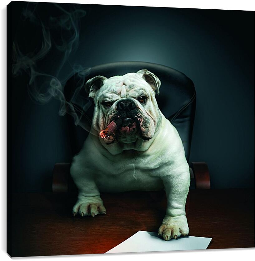 Собака босс в кабинетеЮмор<br>Модульная картина из 3 частей . Любые размеры и конфигурации на выбор. Материал печати: натуральный холст.<br>Размер: 90x85 см., 120x113 см., 150x141 см.;