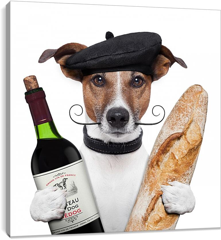 Французская собака с багетом и бутылкой винаЮмор<br>Модульная картина из 3 частей . Любые размеры и конфигурации на выбор. Материал печати: натуральный холст.<br>Размер: 90x90 см., 120x120 см., 150x150 см.;